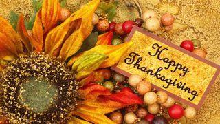 Thanksgiving-2015-5